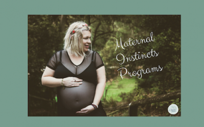 Introducing the Maternal Instincts Programs